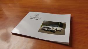 W113 - PAGODA Mercedes Benz