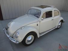 VW Brouka