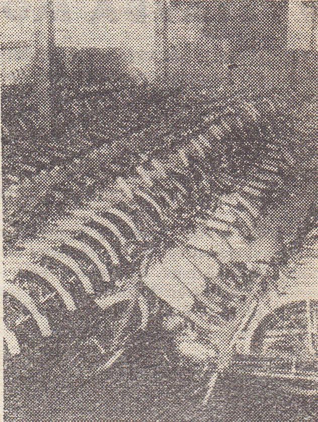 Hotové mopedy Stadion